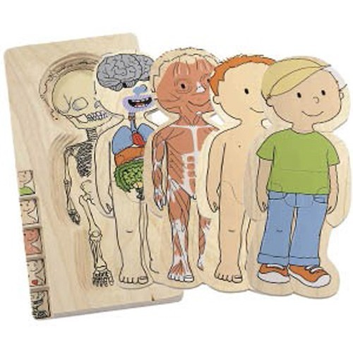 Love Your Guts Learning Anatomy With Kids