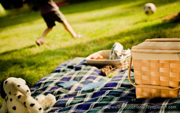 Perfect picnic with kids: 11 secrets of success